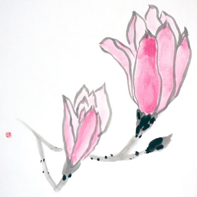 Magnolia flowers - on shikishi board