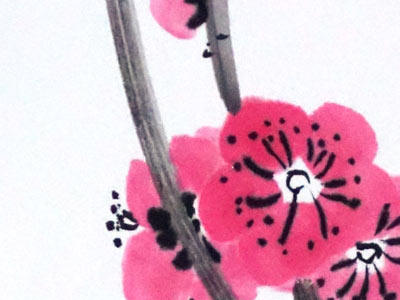 New flowers on old plum tree - on shikishi board
