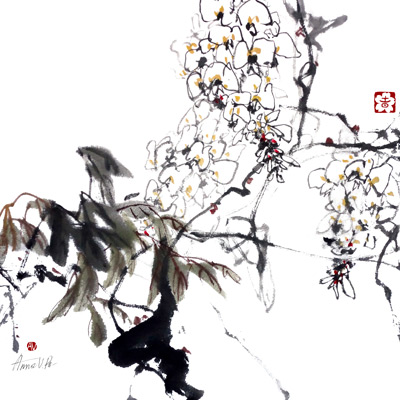 White Wisteria - print on demand
